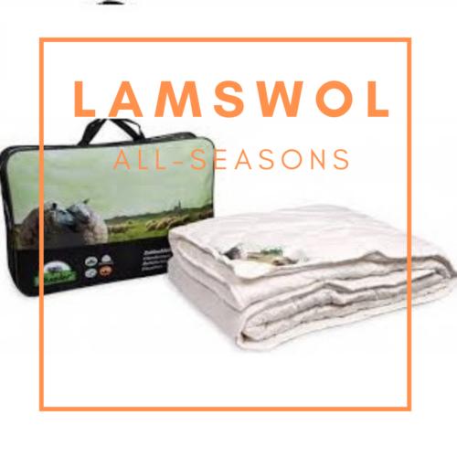Texeler lamswol all seasons dekbed